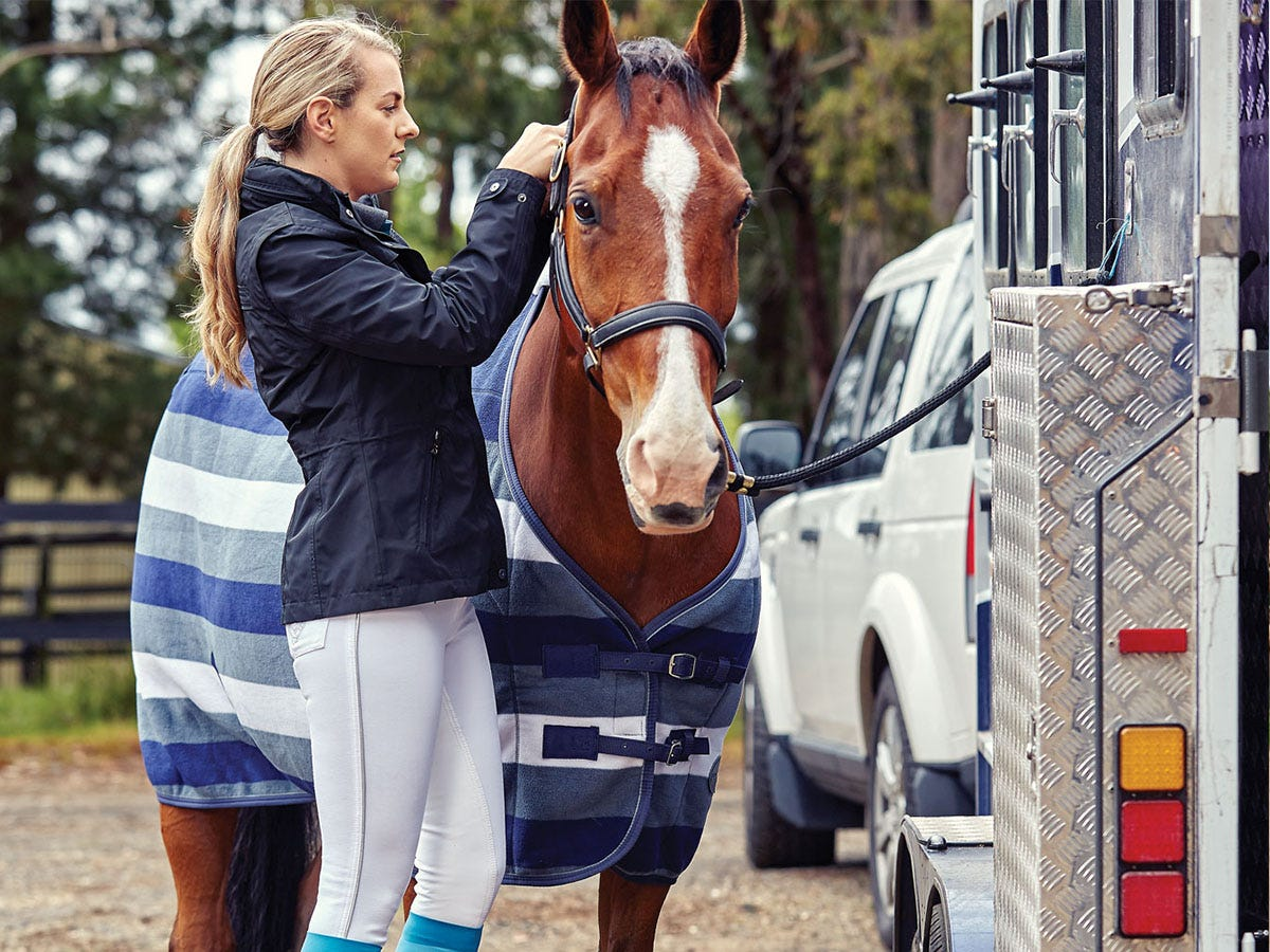 Horseland's hints for getting competition ready