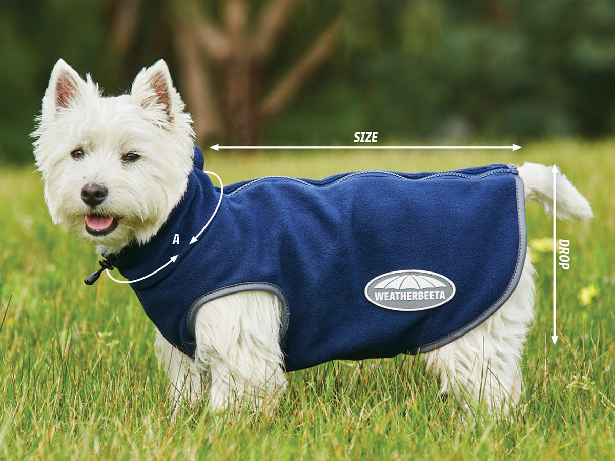 Size Guides For WeatherBeeta Dog Products