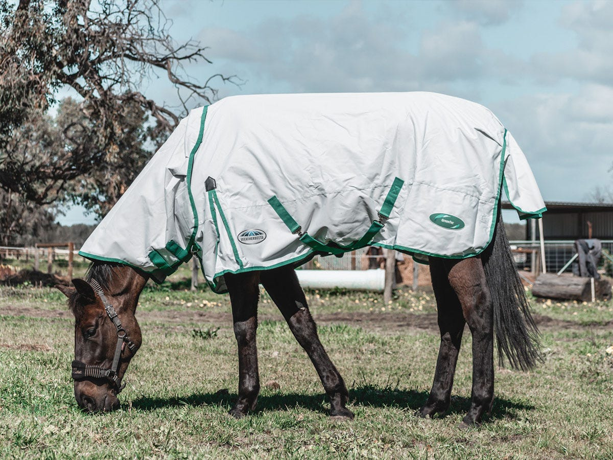 Green-Tec - Tried & Tested by @EliRoseEquestrian
