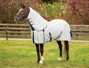 Summer Sheet Combo Neck With Freestyle Tail III