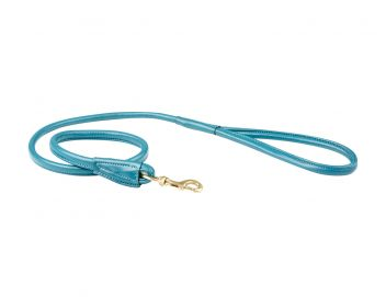Rolled Leather Dog Lead