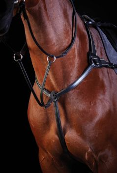 5 Point Breastplate