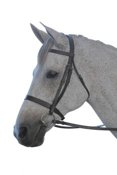 Flat Cavesson III Bridle