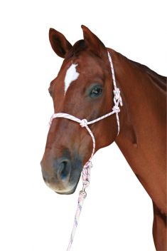 Rainbow Rope Headcollar & Lead Set