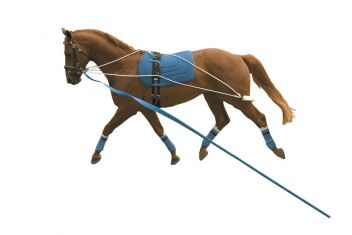 Lunging Training System