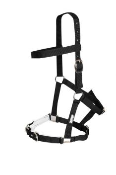 NYLON PADDED LUNGE CAVESSON