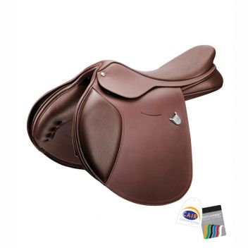 Momentum Saddle With Cair