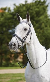 Crystal ChecFlash Bridle