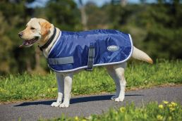 ComFiTec Windbreaker 420d Dog Coat