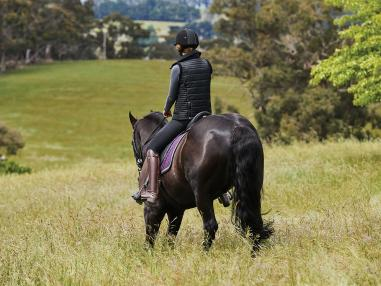Top 10 Boredom Busters with your Horse
