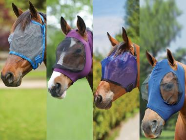 Important Fly Mask Tips This Summer